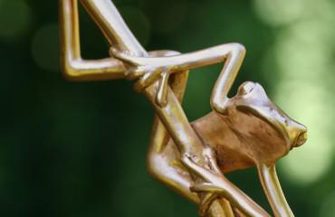 bronzen boomkikkertjes