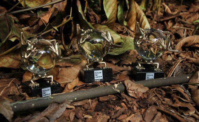 Future For Nature Award
